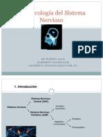 F.del Sistema Nervioso