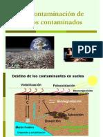 Tratamientos para la recuperaci+¦n de suelos contaminados