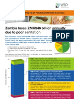 Economics of Poor Sanitation in Zambia
