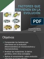 Factores que intervienen en la evolución