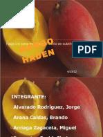Seminario 2 - Mango Haden