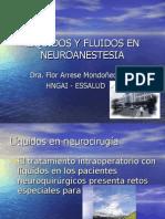 Liquidos y Fluidos en Neuroanestesia Clase 2007