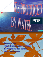 Diseases Produced by Water 1228298910726522 8