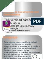 Lenguaje & Construcción Del Conocimiento