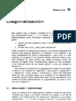 Libro blanco.1 (1)
