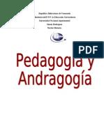 ensayo. desarrollo cognoscitivo