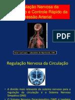 Mecanismos de controle rápido da Pressão arterial..