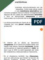 General Ida Des de Las Bacterias