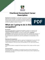 Chartered Accountant Career Description