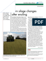 Corn Silage Changes After Ensiling