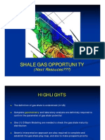 Shale Gas Play