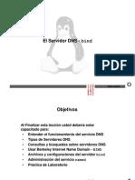 Modulo DNS Bind Linux