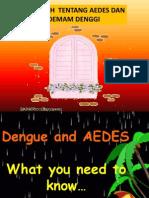 Presentation DENGGI