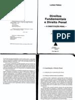 04 - Capitulo 3 Luciano Feldens_direito Penal e Direitos Fundamentais