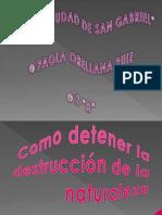 DESTRUCCION DE LA NATURALEZA