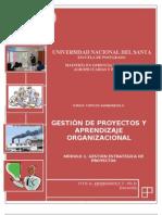 MODULO 1  TOPICOS II   GESTIÓN ESTRATEGICA DE PROYECTOS