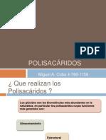 Polisacaridos 3