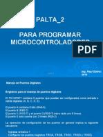 Palta 2 Micro