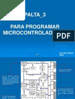 Palta 3 Micro