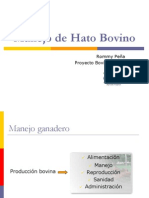 Manejo de Criollo Bovino