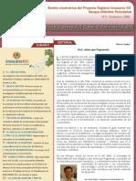 Curí nº 5-2008.Proyecto Araucaria