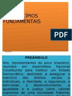 SLIDE_PRINCÍPIOS FUNDAMENTAIS_atualizado (1)