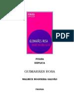 Walnice Nogueira Galvão - Folha Explica Guimarães Rosa (pdf)(rev)