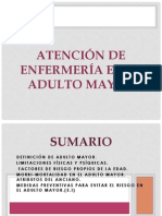 Adulto Mayor Atributos