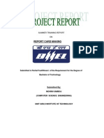 Finl Bhel Report