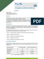 WEG Eficiencia Energetic A Em Motores Eletricos Wmo029 Estudo de Caso Portugues Br