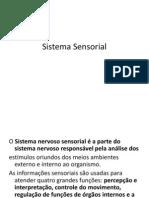 Aula Anatomia Sensorial Enfermagem