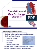 AP Biology Chapter 42 Circulatory and Respiration