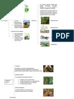 Ecotecnias Bioconstrucción