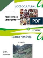 ANALISIS SOCIOCULTURAL diapositivas