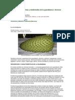 Propiedades nutritivas y medicinales de la guanábana o Annona muricata L
