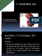 Anatomía+..