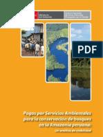 Estudio Psa PDF-Armas