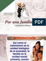 1_origen_de_la_familia