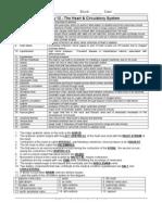 Worksheet - Heart & Circulation Key