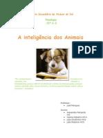 A Inteligência Dos Animais
