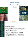 Genetic Modified Plant Resisatance to Fungus and Bisafety