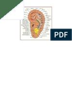 mappa auricolo