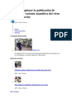 Influenza Variantes H5N1 (2)