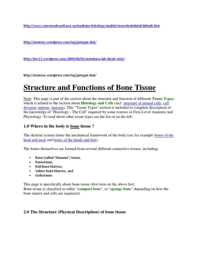 Http Bone Tissue Biology