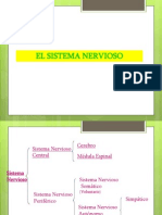 Sistema Nervioso Power Point