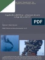 Dezastru Ecologic- Golful Mexic (Sibechi Alexandra