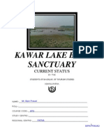 Kawar Lake Bird Sanctuary--02 (2)