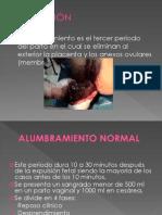 38732789 Alum Bra Mien To Normal y Patlogico