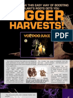 VooDoo Juice Root Booster