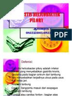 Patologi Anatomi Slide Gastritis Helicobacter Pilory